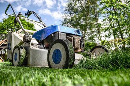 Garten-Arbeit